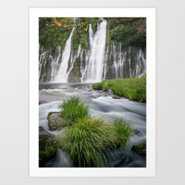 McArthur Burney Falls Memorial National Park Art Print