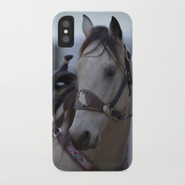 Horse in bridle iPhone Case