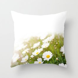 White chamomiles herb flowering plant Throw Pillow