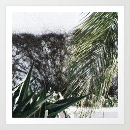 Mossy Art Print