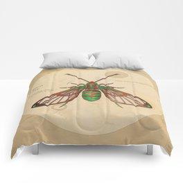 Sorority e.21081 Comforters