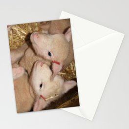Lamb Twins  Stationery Cards
