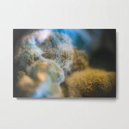 mr. Fungus Metal Print