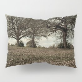 Three Oaks, Spring. Pillow Sham