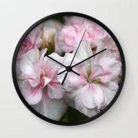 abigail larson Wall Clocks featuring Pelargonium Dreams - Princess Abigail by Martina Cross Foto & Kalenderdesign
