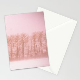 Winter 6 Stationery Cards