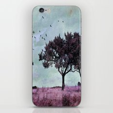 A something in a summer´s day iPhone & iPod Skin