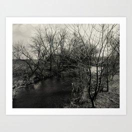 Creekside Black and White Art Print