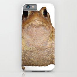 Bufo Bufo European Toad  Isolated iPhone Case