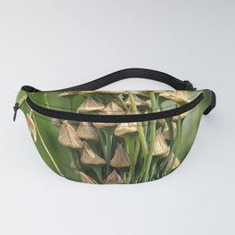 Seed Pods Fanny Pack