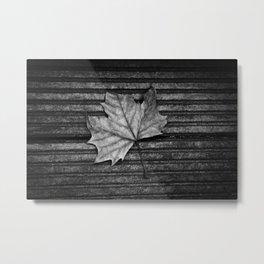 Maple Metal Print