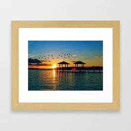 South for the Winter Framed Art Print