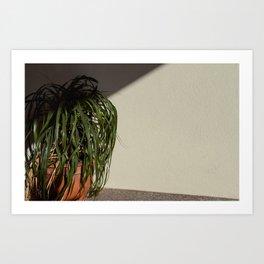 Artificial Foliage Art Print