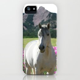 stallion of the front range iPhone Case
