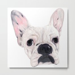 Frenchie Aggie Metal Print