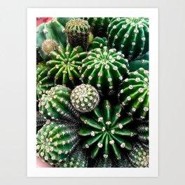 Cactus Bocquet Art Print