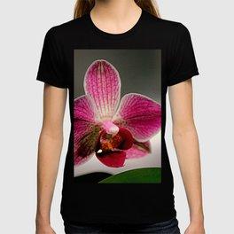 The Light Fantastic T-shirt