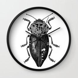 Beetle 11 Wall Clock