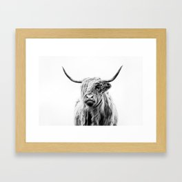 portrait of a highland cow (horizontal) Framed Art Print