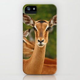 southafrica ... real beauty iPhone Case