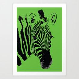 Green Zebra Art Print