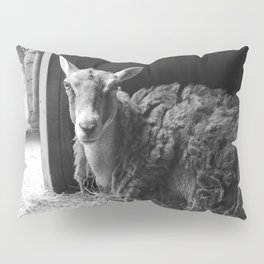 We Are Expecting Visitors Soon Pillow Sham