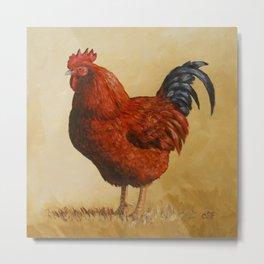 Rhode Island Red Rooster Metal Print
