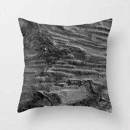 Silver Birch Bark by Teresa Thompson Throw Pillow