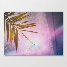 PinkPalm Canvas Print