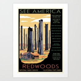 National Parks 2050: Redwoods Art Print