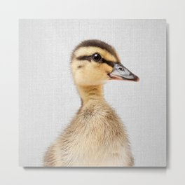 Duckling - Colorful Metal Print