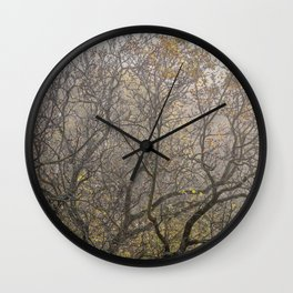 Autumnal tree branches Wall Clock