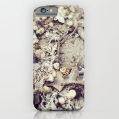 SandShells Slim Case iPhone 6s