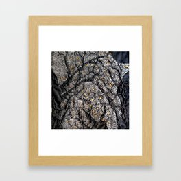 In the golden forest Framed Art Print