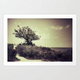 {paths} Art Print