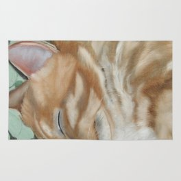 Catnap Sleeping Cat Painting Rug