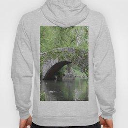 Gapstow Bridge  NYC Hoody