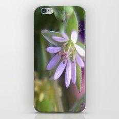 Tiny iPhone & iPod Skin