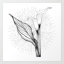 Lily in Black and White Art Print