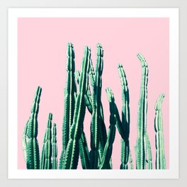 Green Cactus on Pink Art Print