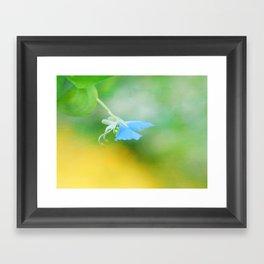 Tiny Butterfly Framed Art Print