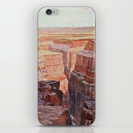 Cassell's Popular Science 1900 - A View of the Colorado Canons iPhone Skin