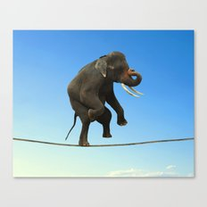 Elephant Walking on wire Canvas Print