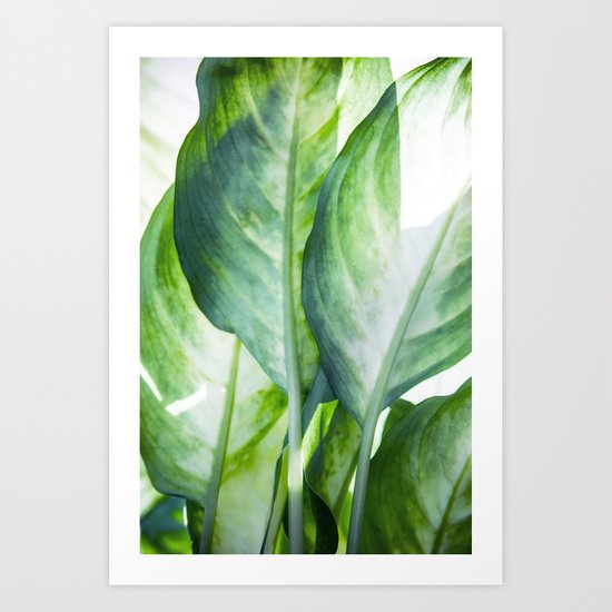 tropic abstract Art Print