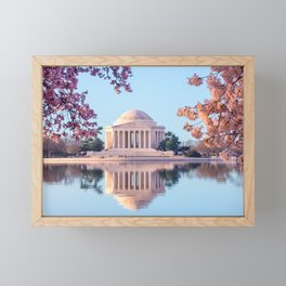 Cherry Blossoms at Jefferson Memorial in Washington DC Framed Mini Art Print