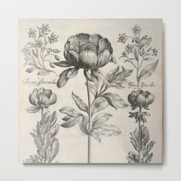 Antique floral black and white chinoiserie flower vintage Paris flowers French botanical goth print Metal Print
