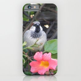 Sparrow in the Vine iPhone Case
