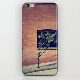 Tree on a Hill iPhone Skin