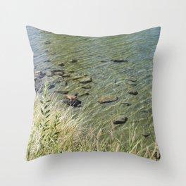 The Calm Along the River Throw Pillow