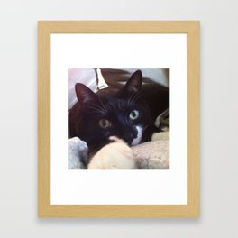kitty wants YOU... Framed Art Print